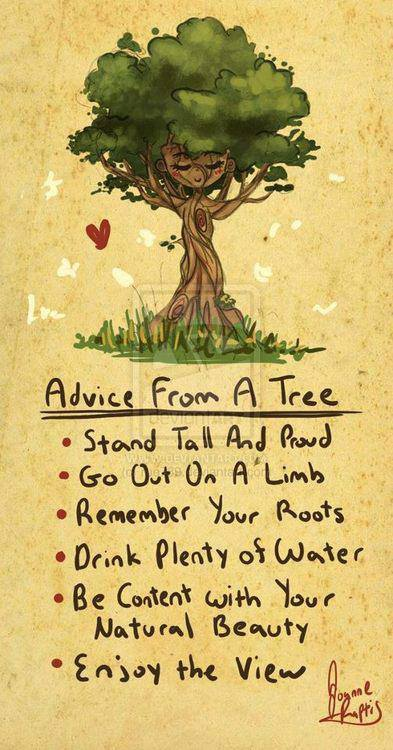 Great Advice from Nature