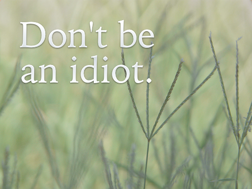 Idiot_InspirationalPhrases